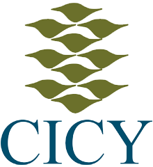 CICY