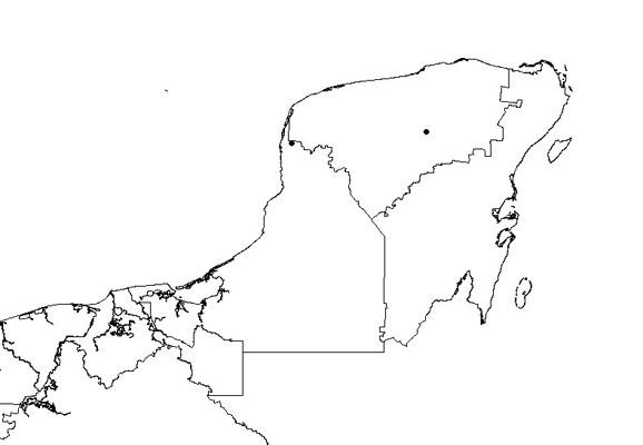 cyperus auto electrical wiring diagramflora pen u00ednsula de yucat u00e1n